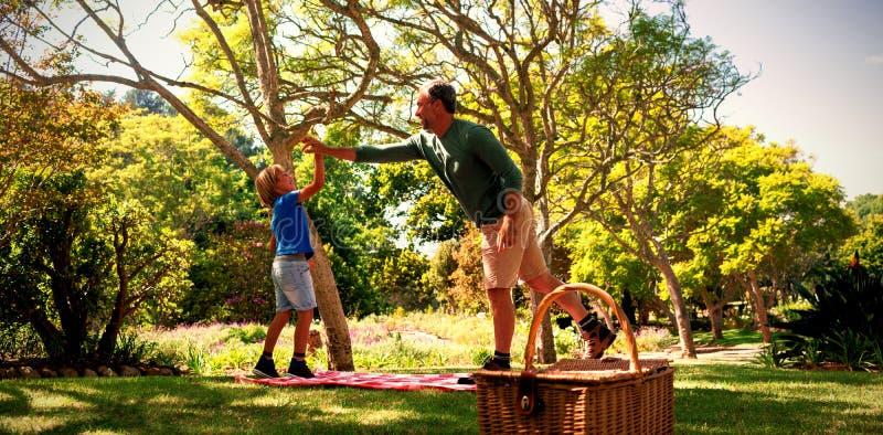 Отец и сын давая высокие 5 пока имеющ пикник стоковое изображение
