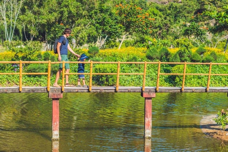 Отец и сын идут вдоль моста над прудом Путешествовать с концепцией детей стоковые изображения