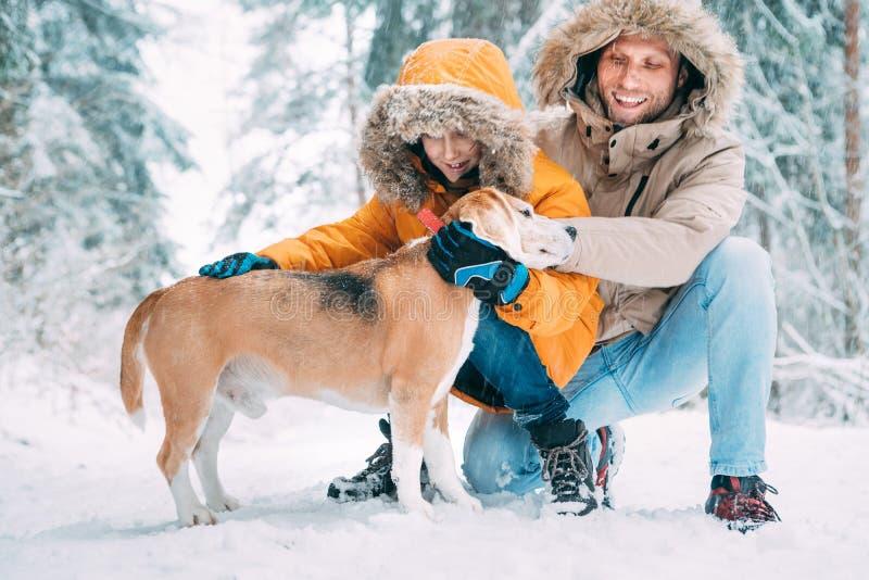 Отец и сын; одетый в теплом с капюшоном случайном Outerwear куртки Parka идя с их собакой бигля; они petting он и усмехаться стоковое фото rf