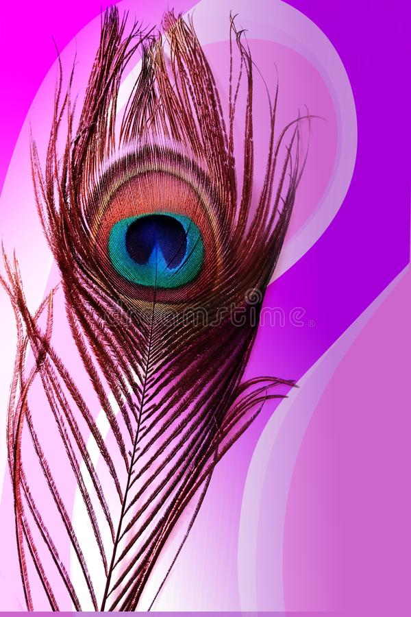 Отец павлина с абстрактной красочной затеняемой предпосылкой также вектор иллюстрации притяжки corel иллюстрация вектора