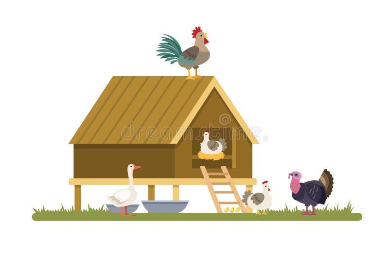 Отечественные птицы на ферме или деревне иллюстрация штока