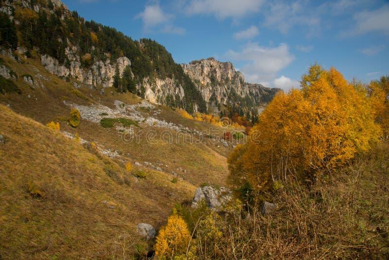 Отключение в октябре к горам кавказского запаса стоковое изображение rf