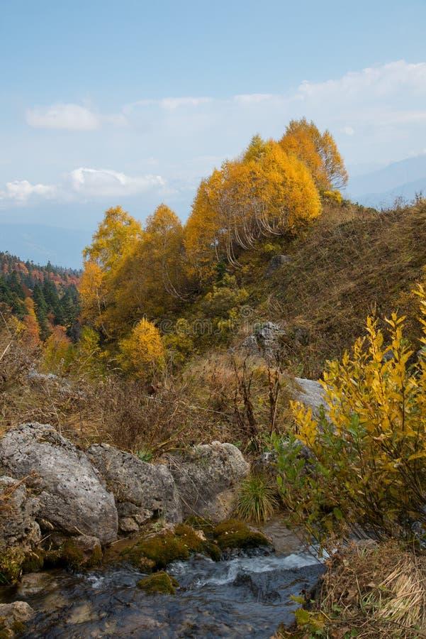 Отключение в октябре к горам кавказского запаса стоковая фотография rf