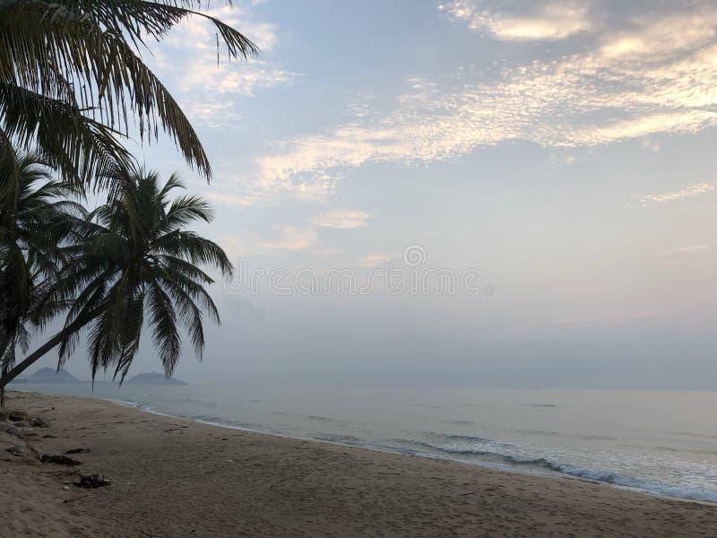 Отключение песка пляжа неба кокоса ладони стоковое фото rf