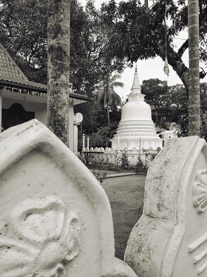 Отключение Шри-Ланка Азии замка Budha стоковое изображение rf