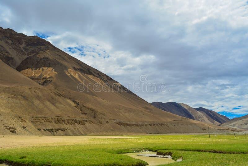 Открытая зеленая земля с горами в Ladakh стоковое фото rf