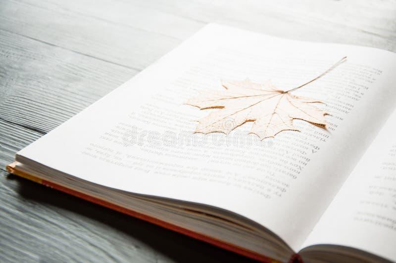 Открытая книга на таблице r : стоковая фотография