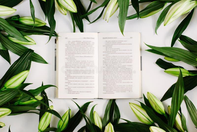 Открытая книга, окруженная зелеными листьями на белом фоне Плоский слой, вид сверху стоковое изображение rf