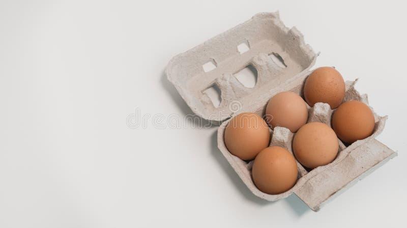 Открытая коробка яйца с 6 яйцами на белой таблице, двинутом под углом взгляде стоковые фото