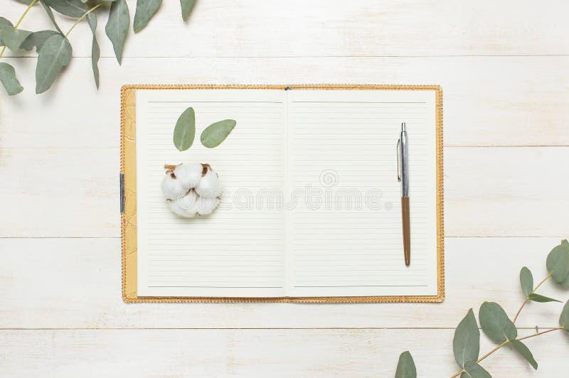Открытая тетрадь с пустыми страницами, ручкой, хворостиной эвкалипта и цветками хлопка на положении белого деревянного взгляда св стоковое изображение