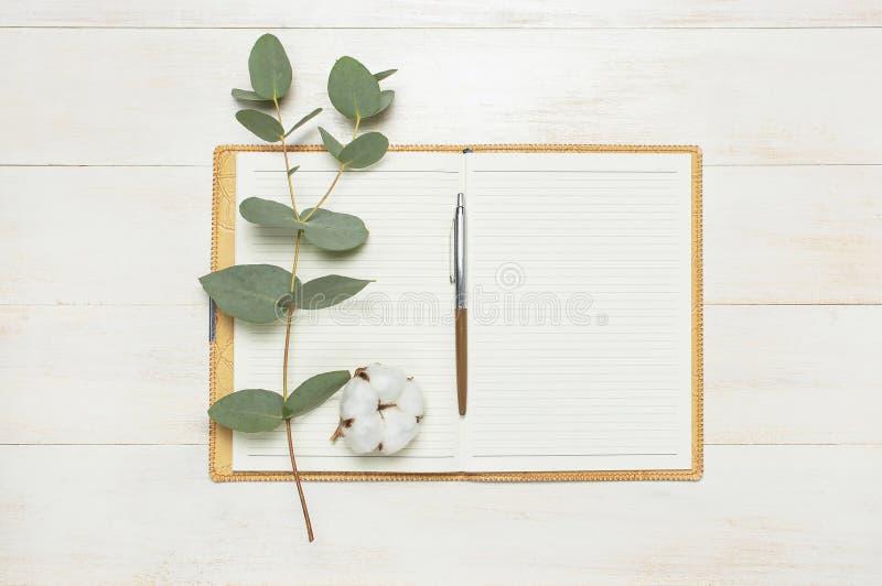 Открытая тетрадь с пустыми страницами, ручкой, хворостиной эвкалипта и цветками хлопка на положении белого деревянного взгляда св стоковые фотографии rf