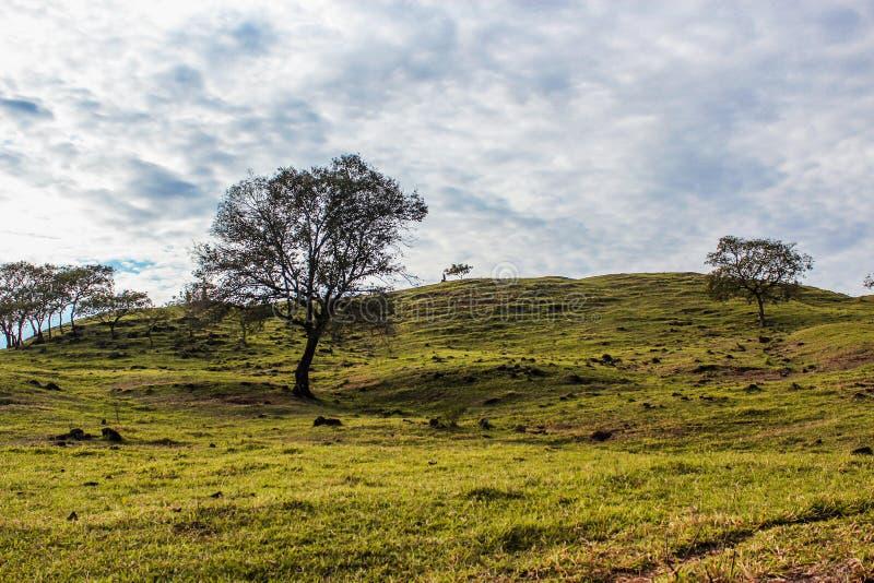 Открытое поле стоковое фото rf