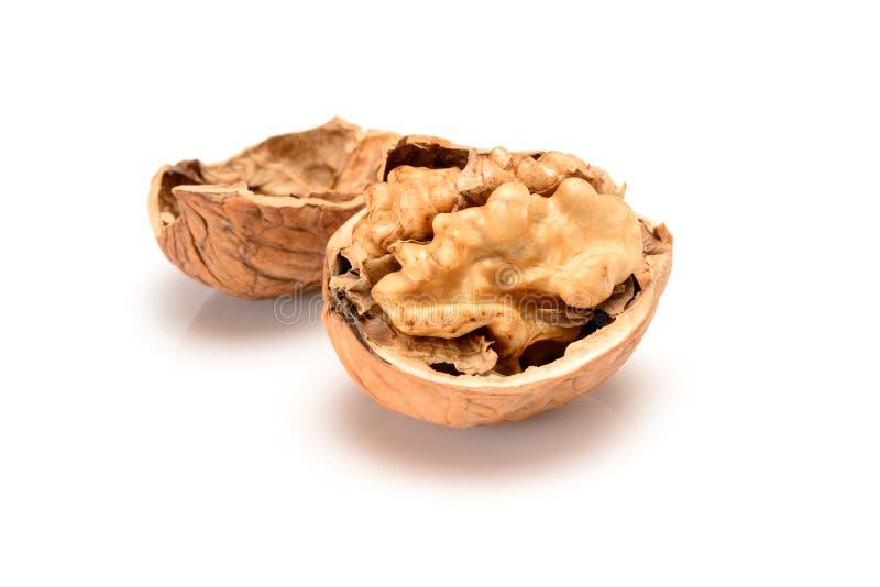 Открытый грецкий орех, закрывает вверх по макросу, на серой предпосылке с отражением стоковые фото