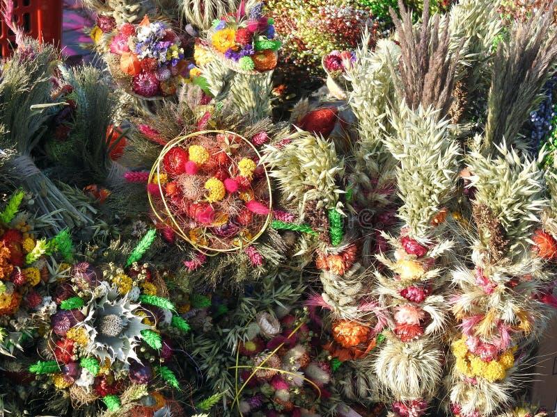 Отличающаяся ладонь сделанная от цветки, Литва стоковое изображение rf