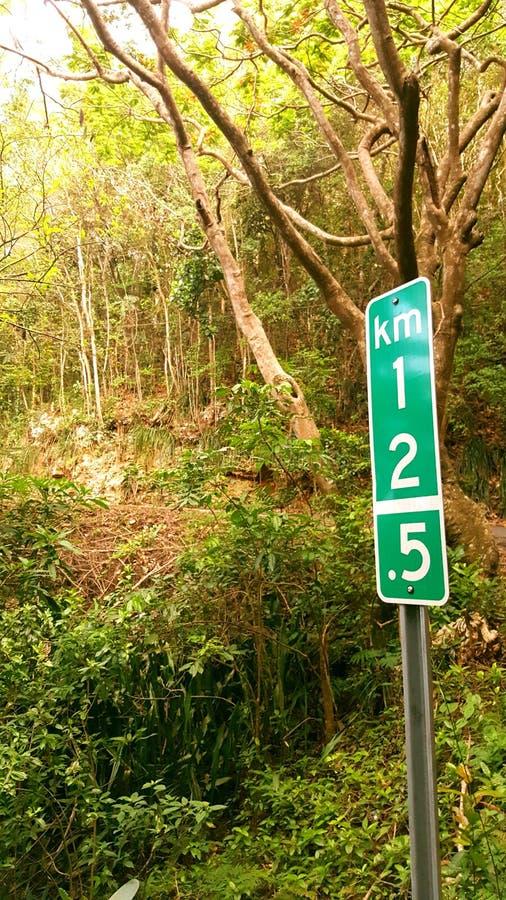 Отметка километра в джунглях стоковые фото