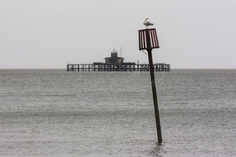 Отметка Groyne и пристань залива Herne стоковое фото rf