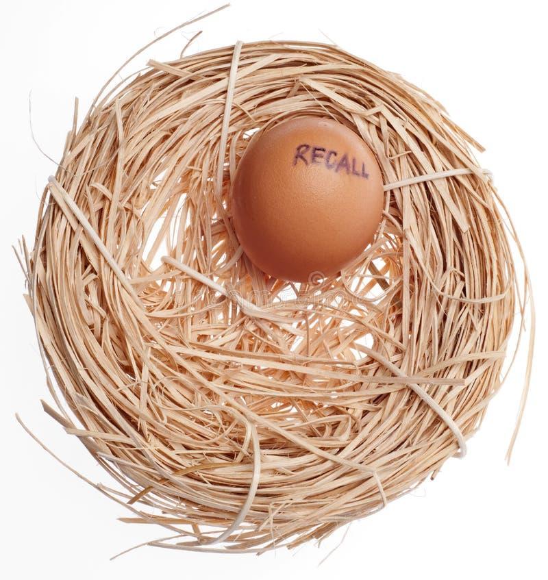 отозвание гнездя яичка принципиальной схемы стоковые фото