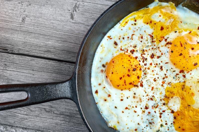 лоток яичек зажаренный стоковое фото rf