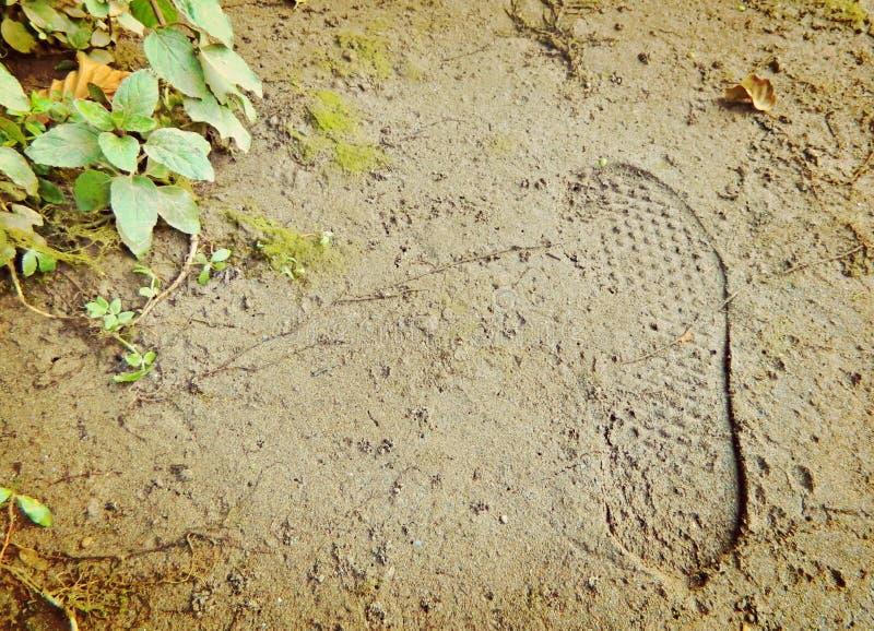 Отпечаток в песке стоковая фотография rf