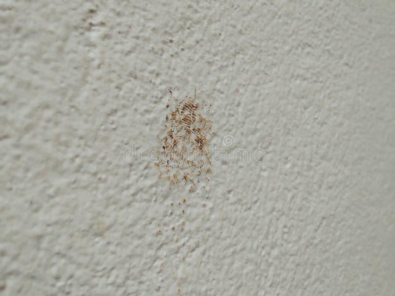 Отпечаток пальцев на бетонной стене стоковые фото