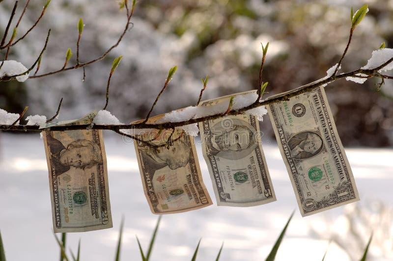 отпочковываясь доллары стоковая фотография rf