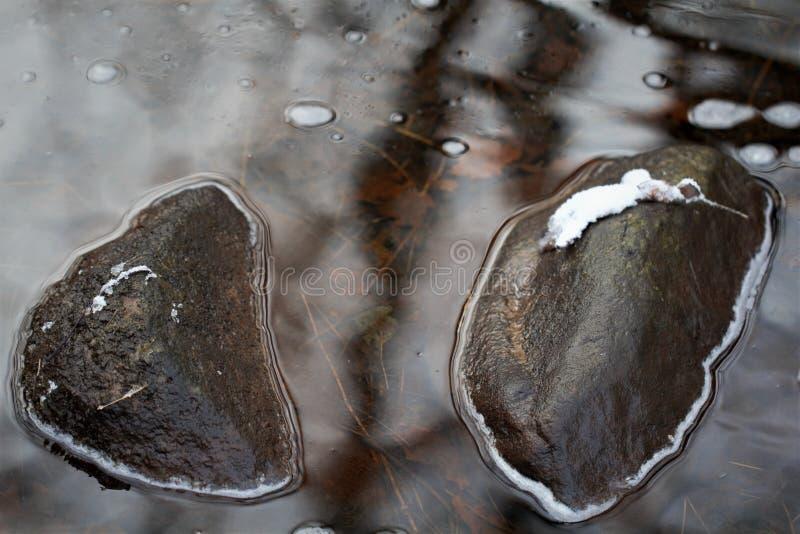 Отражая бассеин стоковое фото