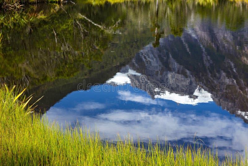 Отражение бассейна Питера стоковые изображения rf
