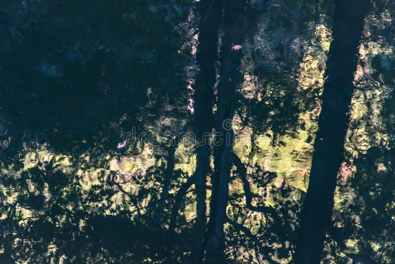 Отражение вала в реке стоковая фотография rf