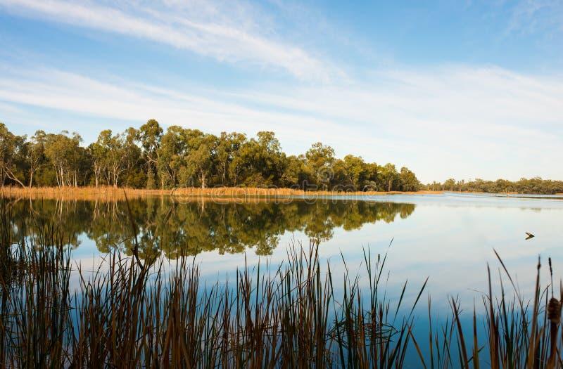 Отражение в воде, королях Billabong, Австралии стоковые изображения rf