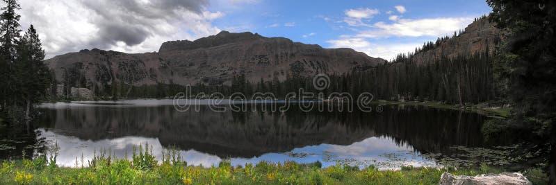 отражение горы панорамное стоковые изображения rf