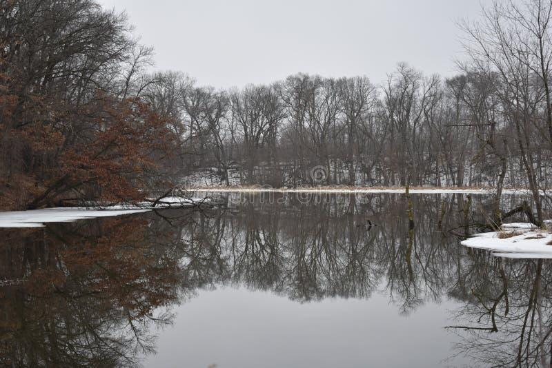 Отражение зимы стоковые фото