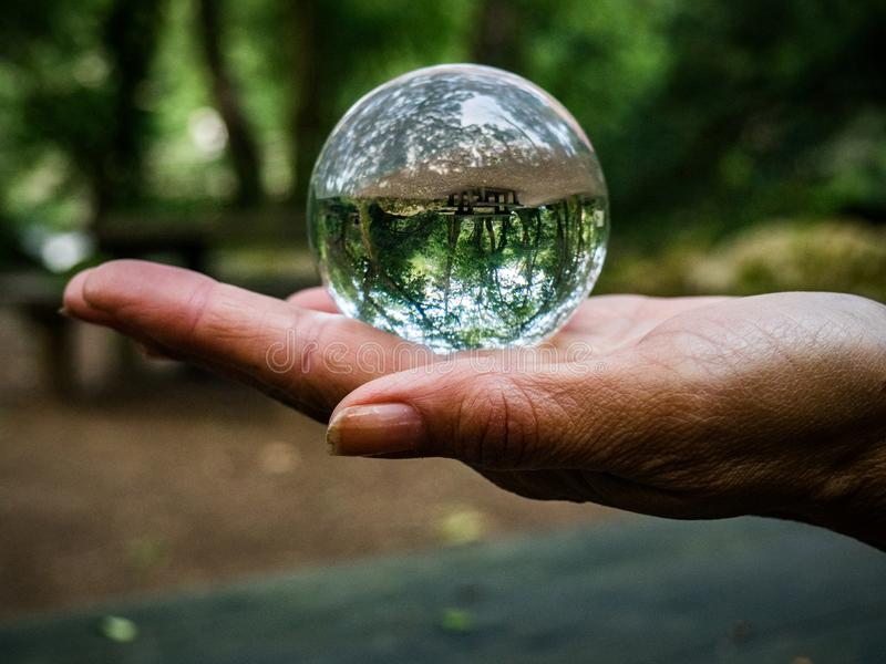 Отражение леса в стеклянном шарике на руке стоковая фотография rf