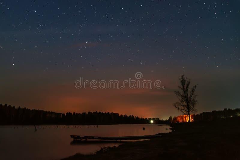 Отражение леса неба озера звезд стоковое фото rf