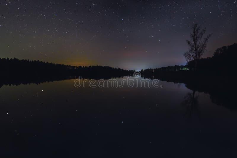 Отражение леса неба озера звезд стоковые изображения