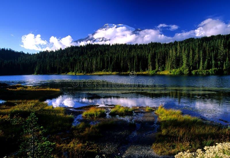 отражение озера после полудня стоковые фотографии rf