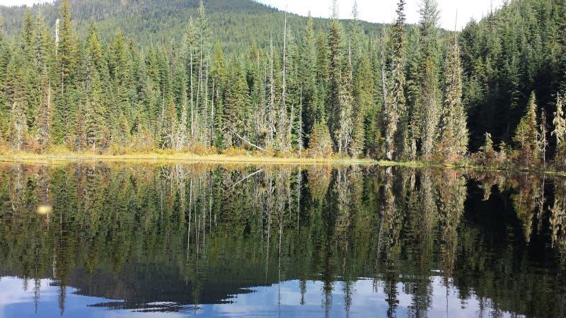 Отражение озера священник стоковые фото