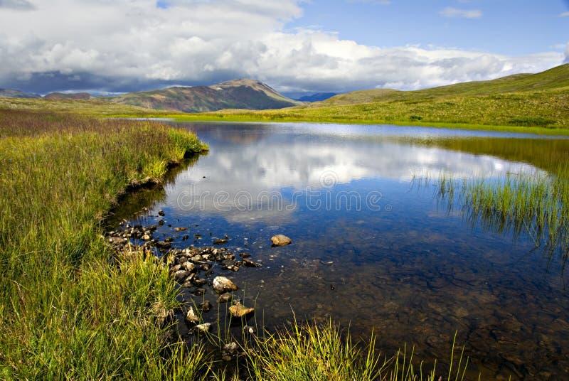 отражение озера denali стоковая фотография