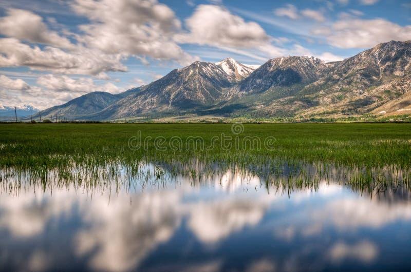 Отражение долины Carson стоковое фото
