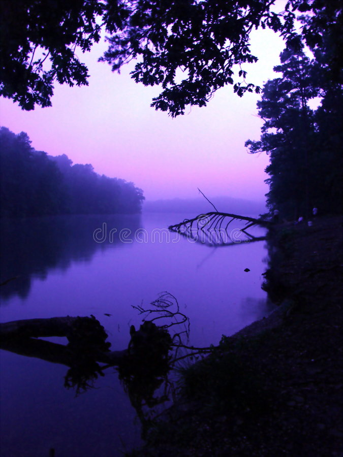 отражение утра стоковое фото