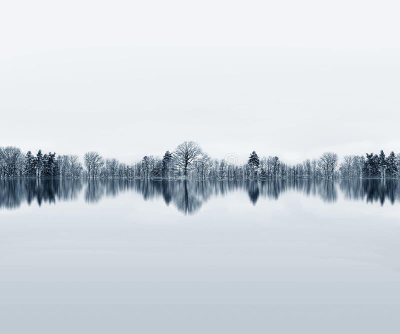 Отражение Treeline стоковое изображение
