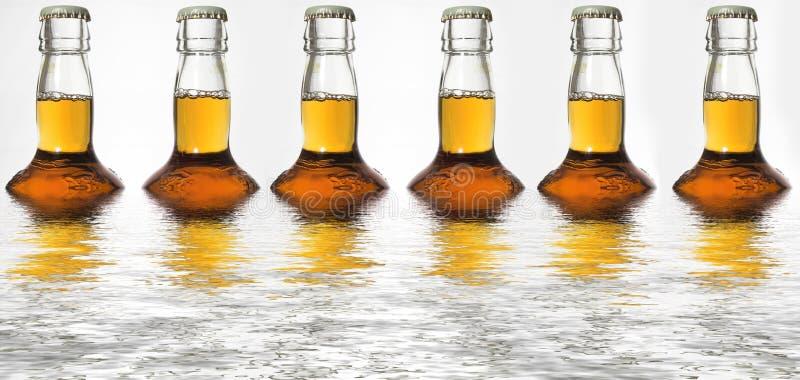 отражения бутылки пива стоковая фотография rf