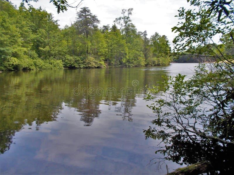 Отражения воды затишья реки Дэн стоковое фото rf