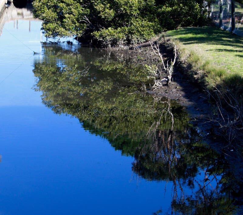 Отражения воды Сиднея стоковые изображения