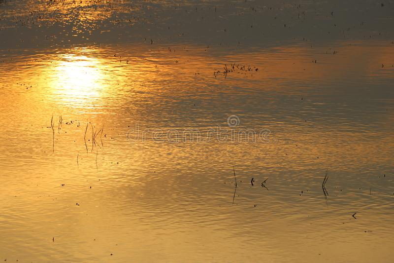Отражения выравниваясь солнца на поверхностной воде стоковое изображение