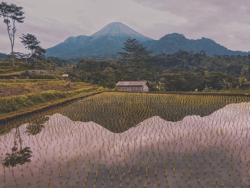 Отражения горы стоковые изображения rf