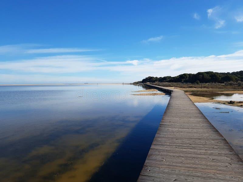 Отражения и деревянный путь на laguna пляжа Chia Su Giudeu - Сардинии стоковое фото rf