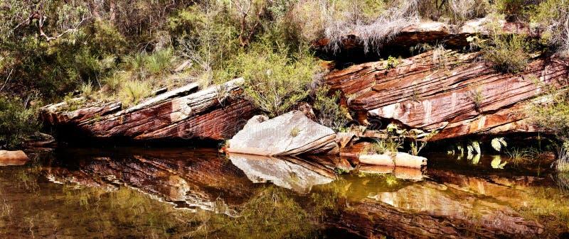 Отражения на воде на королевском национальном парке, NSW, Австралия стоковое фото rf