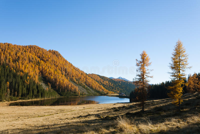 Отражения на воде, панорама осени от озера горы стоковое изображение rf