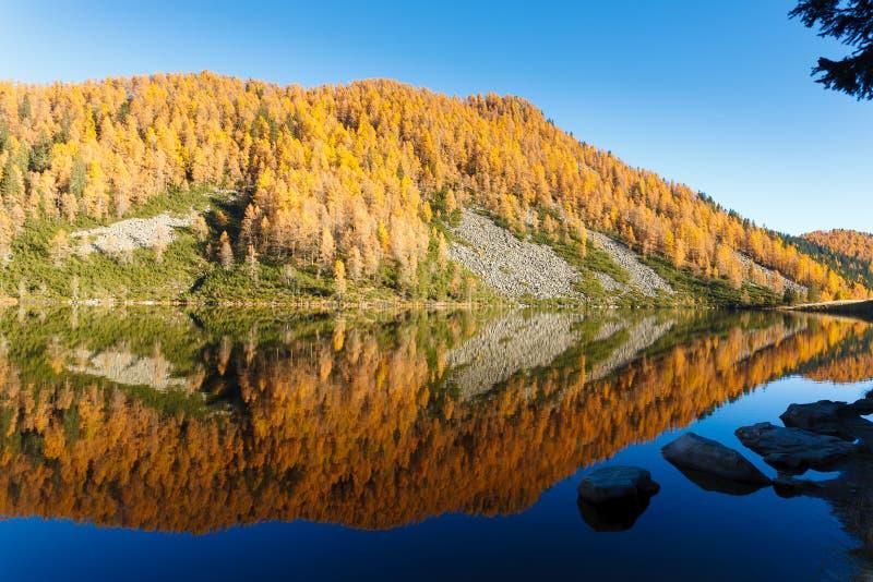 Отражения на воде, панорама осени от озера горы стоковая фотография rf