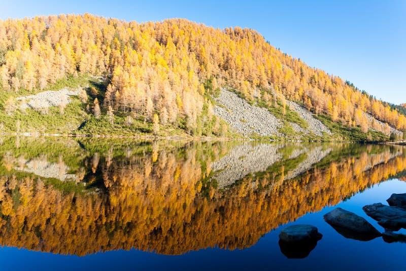 Отражения на воде, панорама осени от озера горы стоковое фото rf